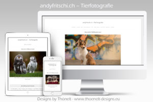 webseite andyfritschi.ch  300x199 - Website-Layouts