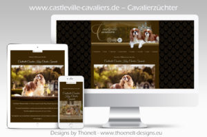 webseite cavaliere 300x199 - Website-Layouts