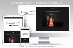 webseite tiermodelkartei 300x199 - Website-Layouts