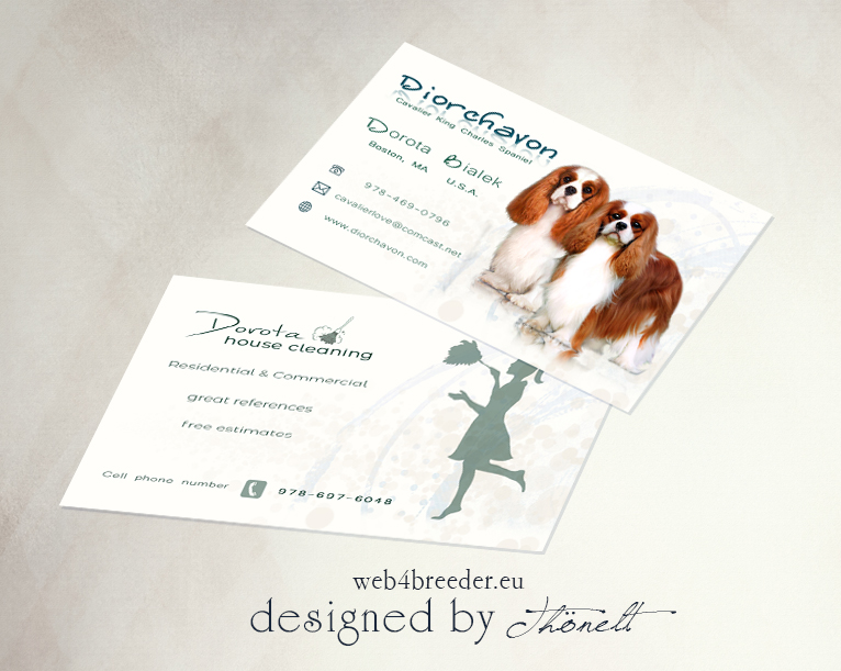 business housecleaning cavalier king charles - Printgrafiken