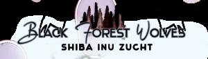 logo png 300x85 - Logo's