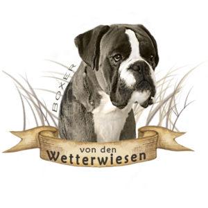 logo wetterwiesen 300x300 - Logo's