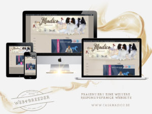 webseite casamadico papillons 300x225 - Website-Layouts