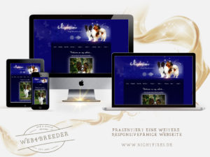 webseite nightfires papillons 300x225 - Website-Layouts