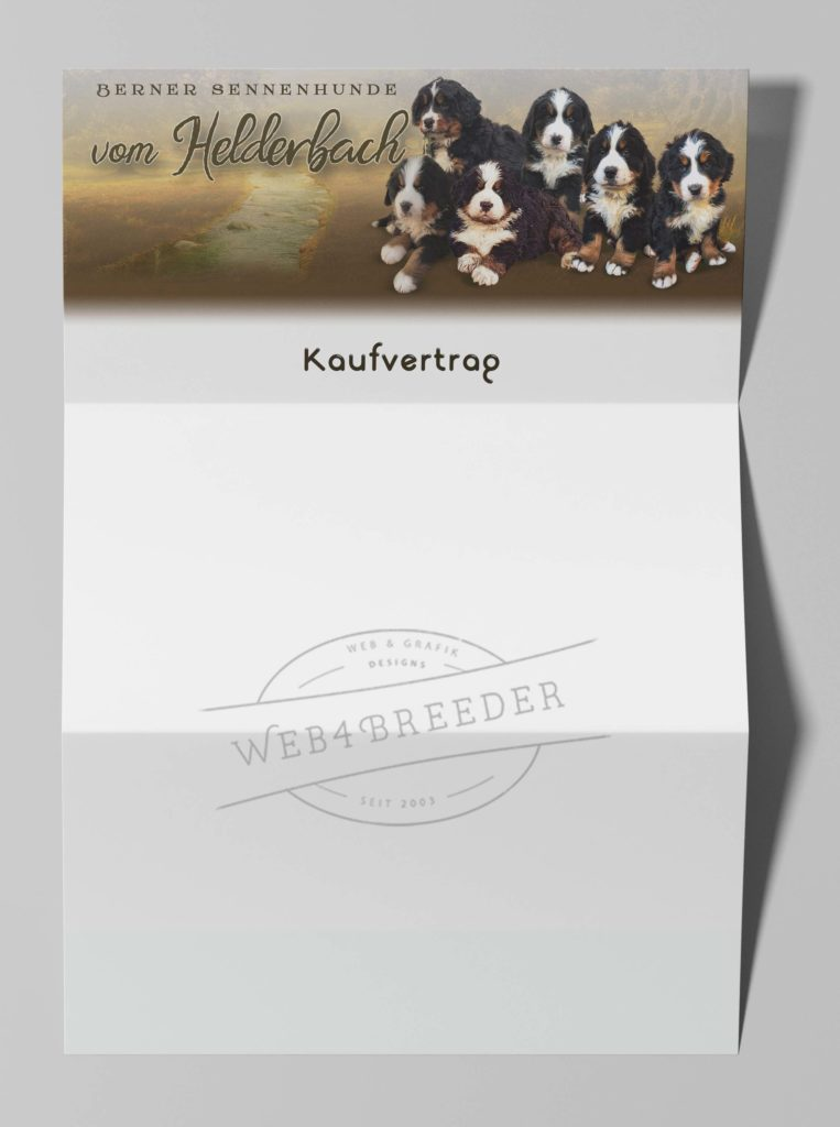 Letterhead Envelope Mockup 2 763x1024 - Printgrafiken