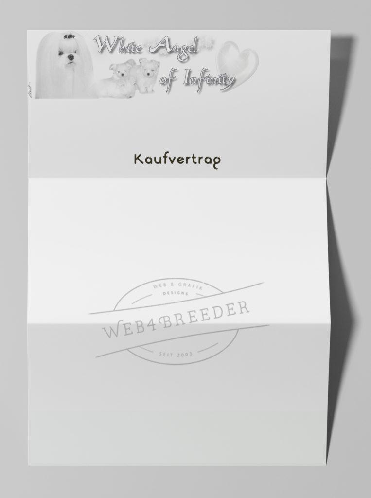 briefpapier2 1 763x1024 - Printgrafiken