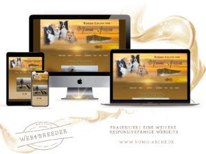 webseite 2020 Numis Arche Border 300x225 - Website-Layouts