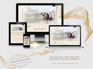 webseite Instaed Chinese Crested 300x225 - Website-Layouts