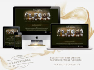website Chinese Crested2 300x225 - Website-Layouts